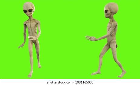 Alien walks on green screen. 3D rendering