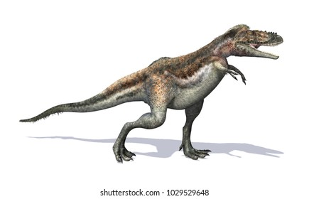 The Alioramus was a dinosaur that lived during the cretaceous period - 3D render.