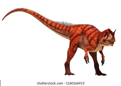 An Allosaurus with and orange and red skin stands ready for a fight.  This theropod dinosaur was one of the prehistoric apex predators of the Jurassic era.  On a white background. 3D Rendering.