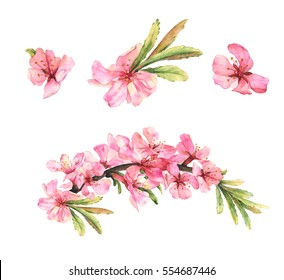 Pink flowers images stock photos vectors shutterstock set of watercolor pink flowers mightylinksfo