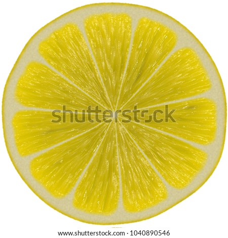 almost transparent lemon slice on white stock illustration royalty