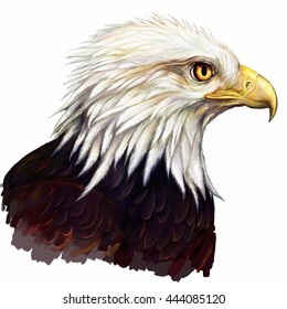 american eagle head digital paintin g/ american eagle