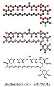 Amphotericin B antifungal drug molecule. Stylized 2D renderings and conventional skeletal formula.