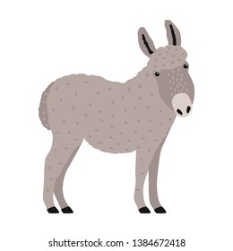 Amusing grey donkey, ass or burro isolated on white background. Portrait of adorable cartoon domestic working animal, farm livestock. Colorful and drawn illustration in modern trendy style.