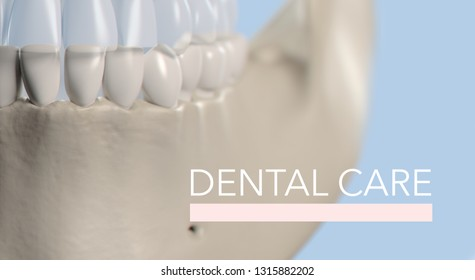 Anatomical dental model of human teeth for dentistry, dental care, medical students. Title on image  Dental Care 3d illustration