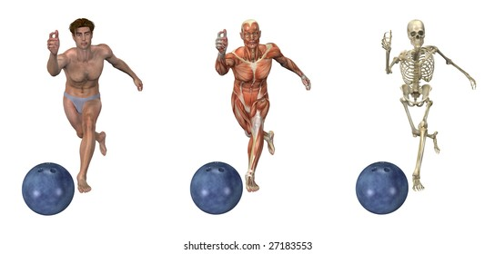Anatomical overlays depicting a man bowling. These images will line up exactly, and can be used to study anatomy.