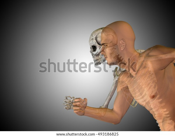 Anatomy concept 3D illustration of human man medical health body chest, head gray bright background for medical, science health male biology medicine bone anatomical muscular system face cranium spine