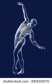 Anatomy of dancing and ballet, 3D illustration. A man in ballet pose with highlighted skeleton showing skeletal activity in ballet dancing