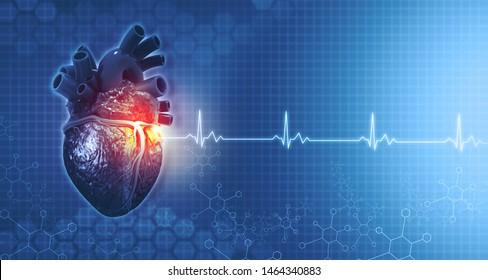 Anatomy of human heart on ecg medical background. 3d render