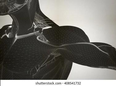 Anatomy wire-frame shoulder. Future bio-technology human body. 3D illustration.