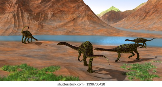 Anchisaurus Dinosaurs 3D illustration - Prosauropod Anchisaurus dinosaurs gather together to keep watch for predators and get a drink of water during the Jurassic Period.
