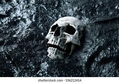 ancient human skull. Apocalypse concept. 3d rendering.