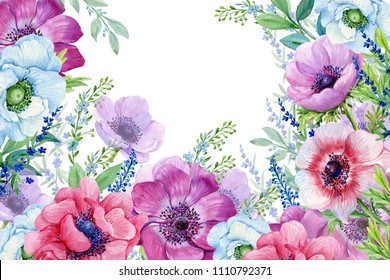 anemone flowers. illustration in watercolor on isolated white background .design for postcards