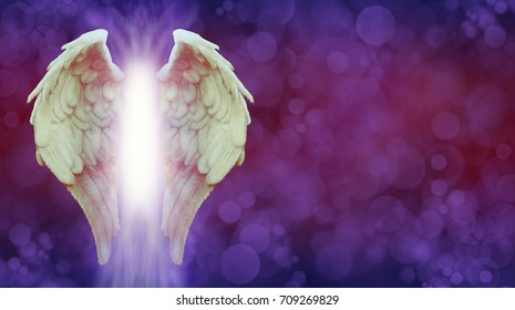 Angel Wings and Magenta Healing Light Banner - White Angel wings with a warm tinge and bright light  between on an ethereal deep purple red colored bokeh background with copy space