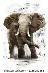 ANGRY AFRICAN ELEPHANT SKETCH
