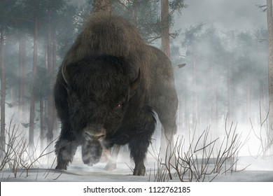 An angry buffalo faces you preparing to charge.  It's a cold winter day in the wilderness American West, and the buffalo breaths an angry cloud of steam over the snowy ground. 3D Rendering
