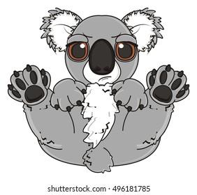angry koala lying on his back
