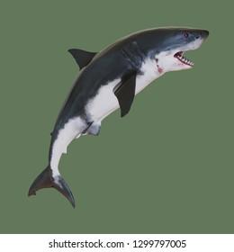 Angry shark. 3d illustration
