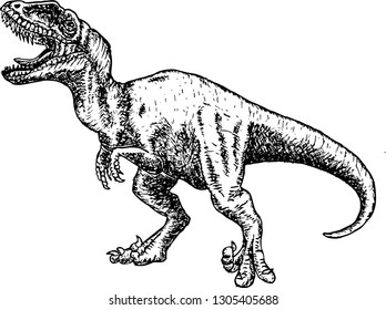 Angry tyrannosaurus rex with open huge mouth, sketch. Hand-drawn carnivorous dinosaur. Animal illustration.