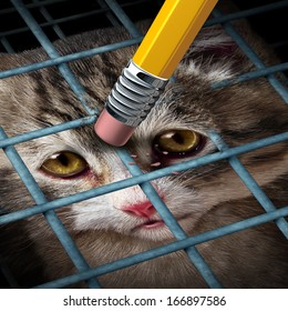 Animal adoption concept and rights as a kitten behind a cage being erased by a yellow pencil eraser as a hope metaphor for adopting pets from a shelter giving freedom to caged orphaned cats and dogs.