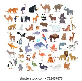 Animal full length portraits collection on white.  poster of domestic and wild animals from various countries, lion family, green alligator, colourful parrot on branch, whale splashing water