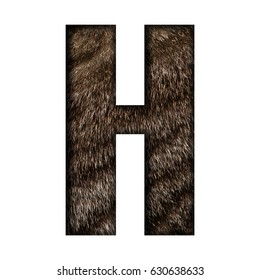 Animal fur textured capital or uppercase letter H illustration in bold style with a realistic furry striped cat pet hair surface effect isolated on a white background with clipping path.
