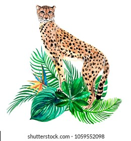 Animal leopard and tropical leaves watercolor illustration