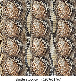 Animal print, leopard texture background,snake pattern