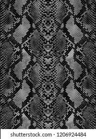Animal serpent skin smoked texture for concept of nature