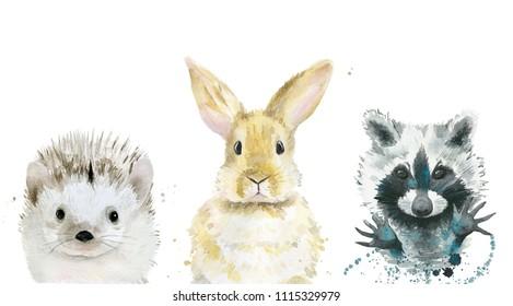 Animal set. Watercolour illustration on white.