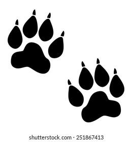 Animal Tracks.  illustration