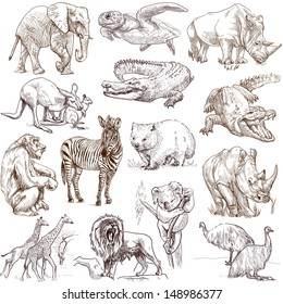 Animals around the world (collection no.1, white) - Collection of an hand drawn illustrations. Description: Full sized hand drawn illustrations drawing on white background.
