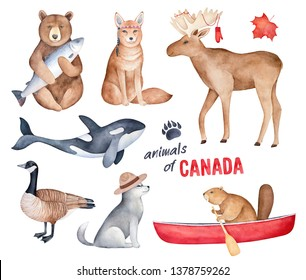 """""""Animals of Canada"""" watercolor illustration set. Handdrawn graphic clipart elements for design decoration, print, stickers, fridge magnets, unique souvenir, special memory gift, children room poster."""