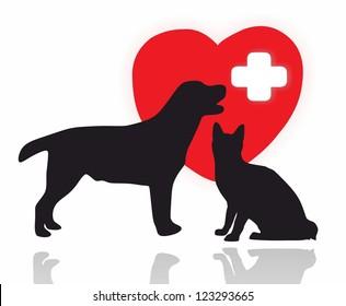 animals - first aid