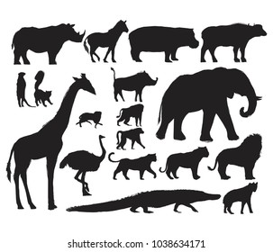 Animals Illustration Art Set