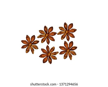 Anise star. Healthy, fragrant spices. Isolated white background.