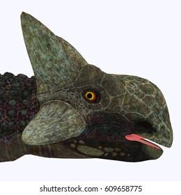 Ankylosaurus Dinosaur Head 3d illustration - Ankylosaurus was a herbivorous armored dinosaur that lived in North America in the Cretaceous Period.