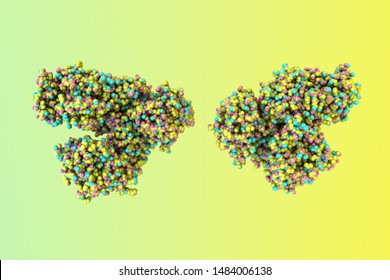 Anthrax toxin lethal factor. Space-filling molecular model of toxin produced by bacterium Bacillus anthracis. Medical background. Scientific background. 3d illustration