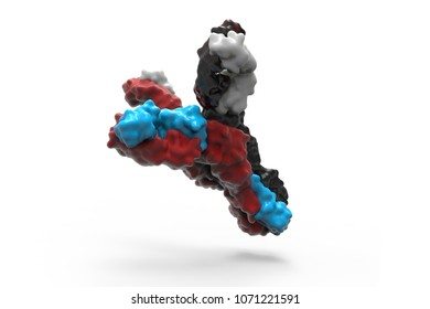Antibodies to cell movement of the virus. 3D illustration.