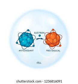 Antioxidant working principle abstract  representation, illustration of a process of electron donation to a free radical molecule on a cell as a background, healthcare template