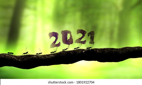 ants carrying 2021 number for the new year 3D rendering