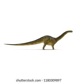 Apatosaurus Dinosaur model on white. Side view. 3D illustration