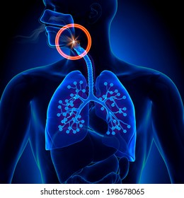 Apnea - Obstruction Sleep Disease Anatomy concept