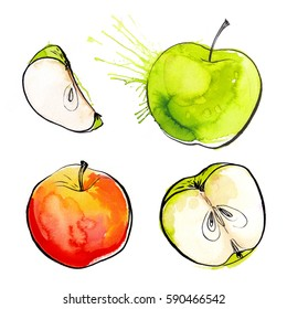Apples painted with watercolors on white paper. Red apple, green apple, leaf, half an apple