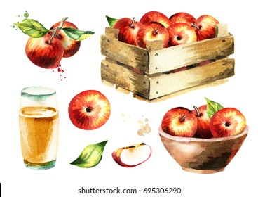 Apples set. Hand-drawn watercolor illustration
