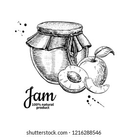 Apricot jam glass jar drawing. Fruit Jelly and marmalade. Hand drawn food illustration. Sketch style vintage objects for label, icon, packaging design.