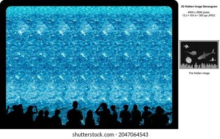 Aquarium View 3D Hidden Image Stereogram Illusion