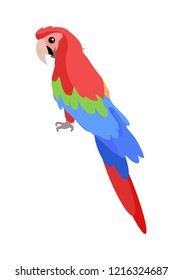 Ara parrot cartoon character. Cute Ara Parrot flat  isolated on white. South America fauna. Colorful parrot icon. Wild animal illustration for zoo ad, nature concept, children book illustrating