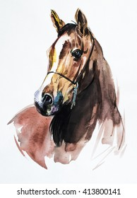 Arabian Horse - Painting