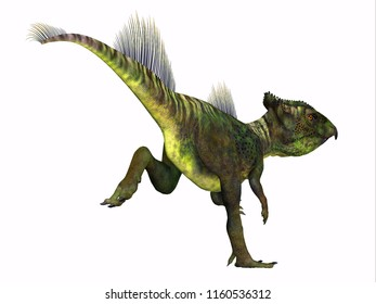Archaeoceratops Dinosaur Tail 3D illustration - Archaeoceratops was a Ceratopsian herbivorous dinosaur that lived in China in the Cretaceous Period.